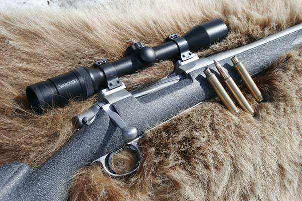 Varmint Hunting Dog Breeds