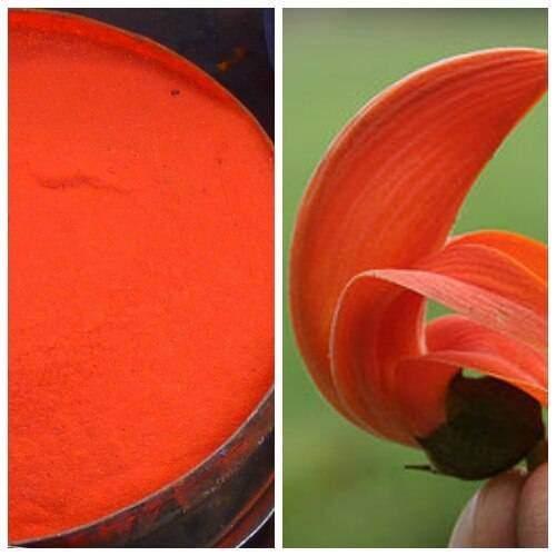 Dazzling Orange
