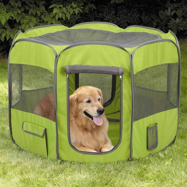 Style and Functionality Come Together in a Furnished Dog Crates
