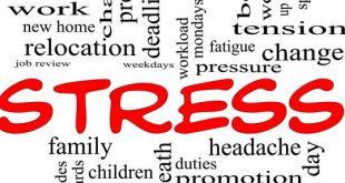 stress-awareness-manage-stress-before-it-manages-you-part-2-zrt97X-clipart