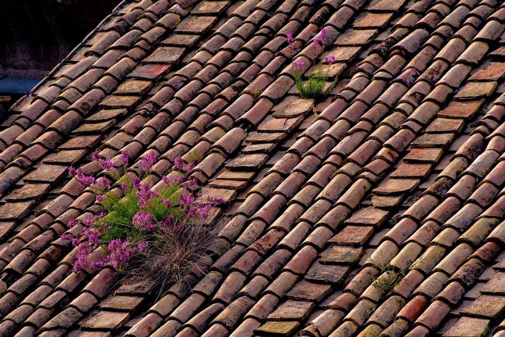 roof-3471905_1280