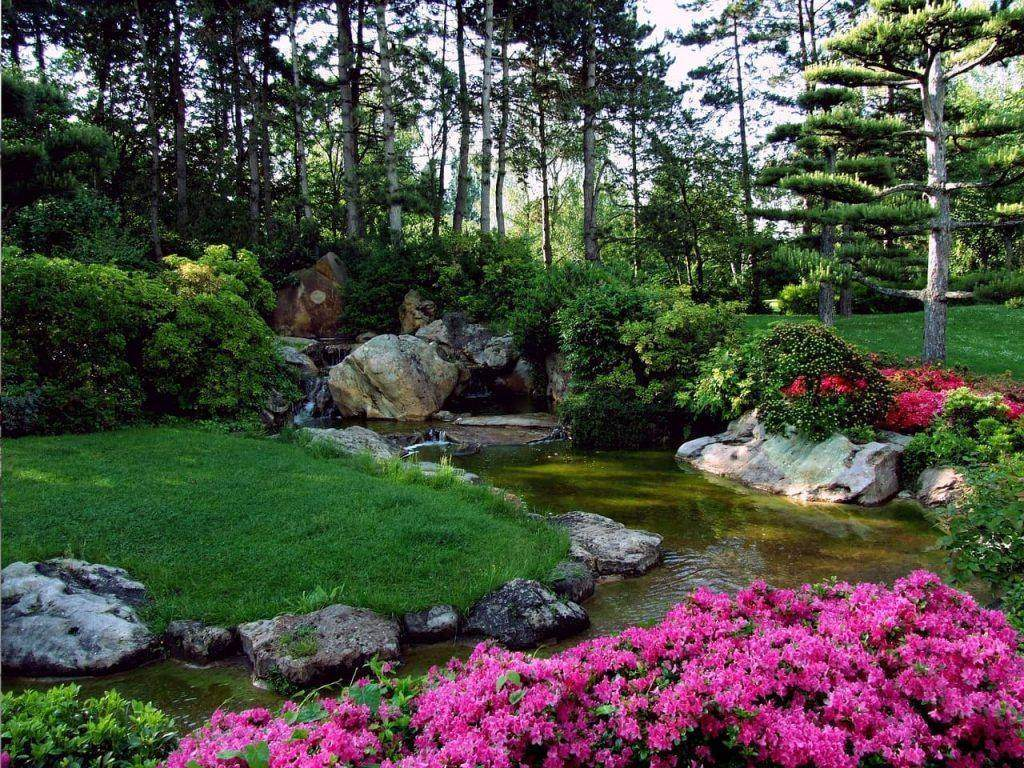 Best Tips For Taking Care Of Your Garden