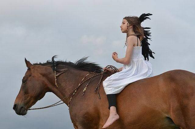 Basics of Horseback Riding