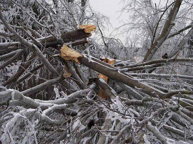 Common Signs of Snow Storm Damage on Your Roof