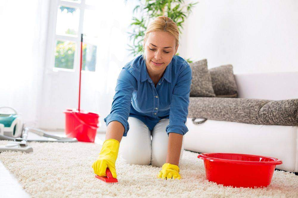 Here's All That You Need to Know About Carpet Cleaning