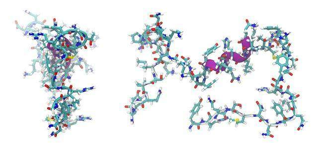 Use Of Peptides In Cosmetics And Anti-Aging