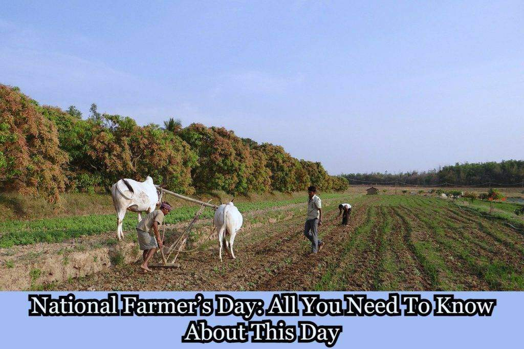 National Farmer's Day: All You Need To Know About This Day