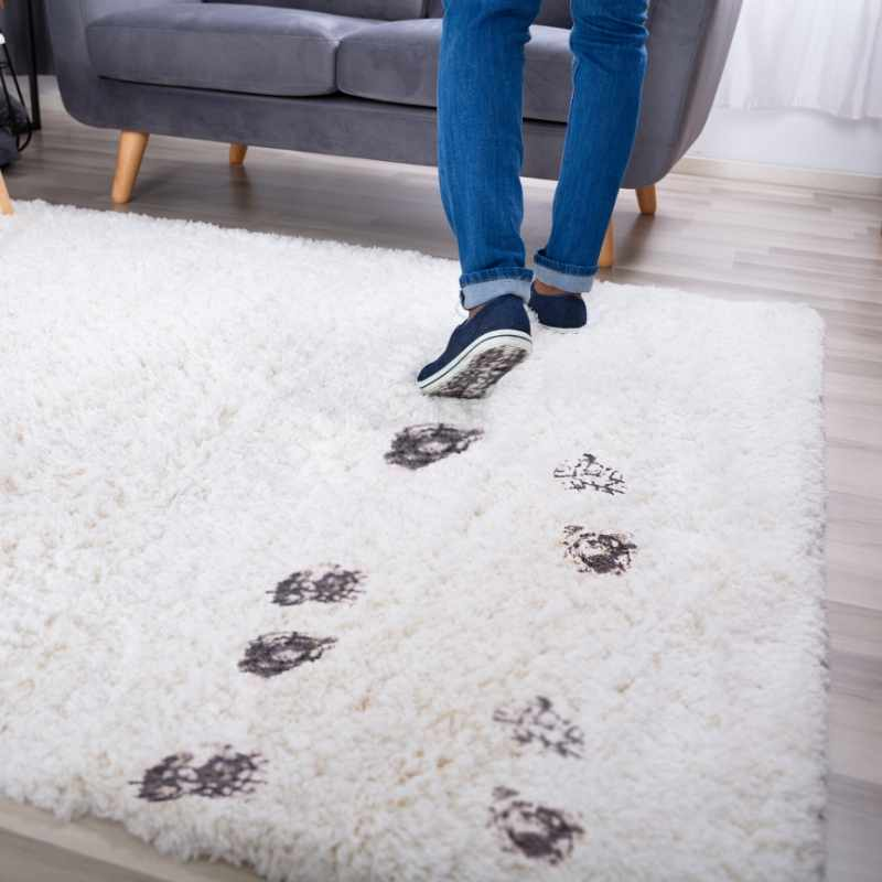 Strategies To Avoid Stain & Grime On Carpet