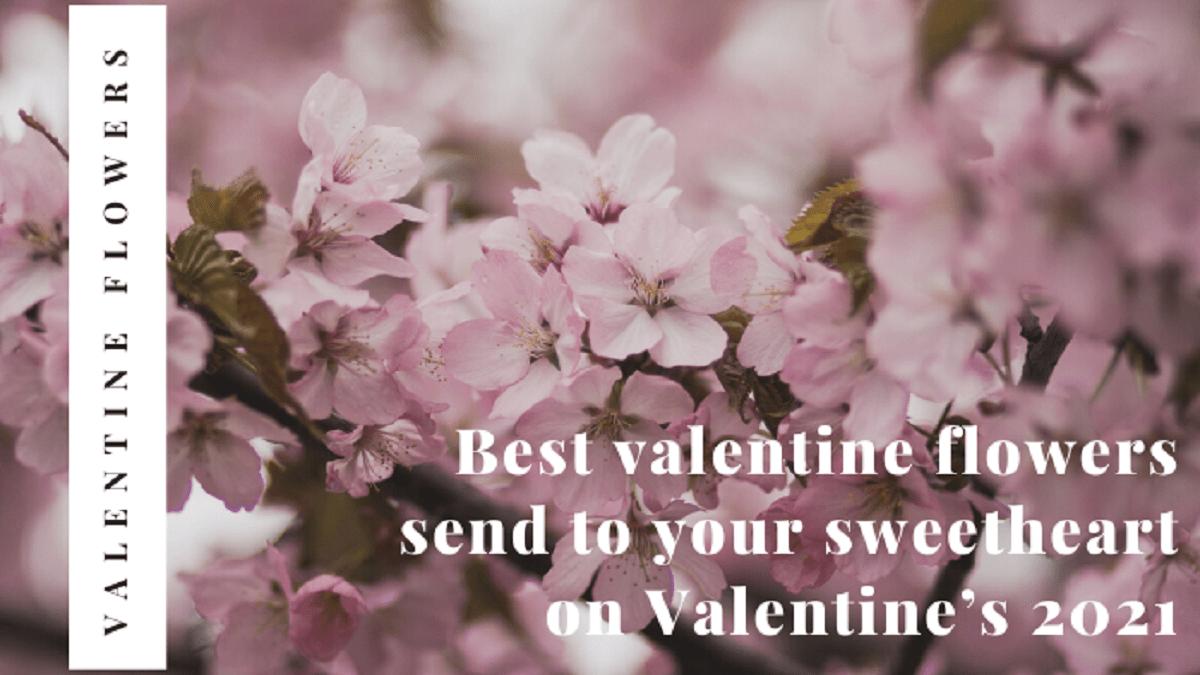 Best Valentine Flowers Send On Valentine's 2021