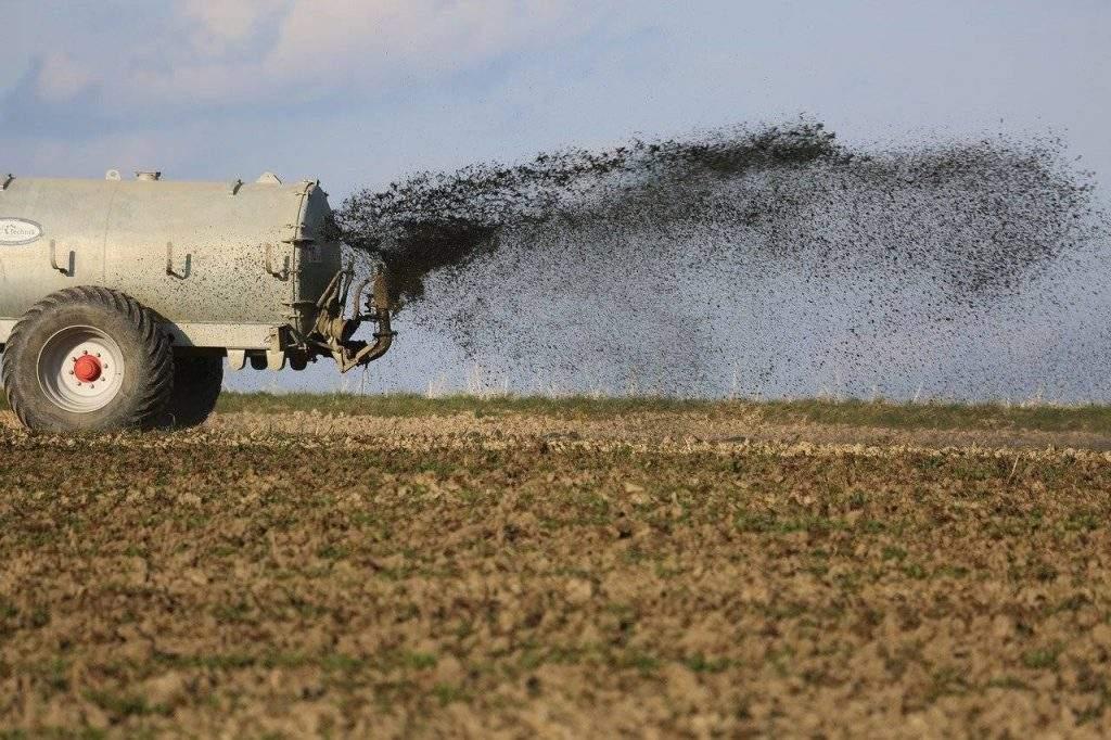 How to Spread Fertilizer