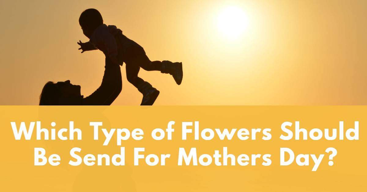 Which Type of Flowers Should Be Sent For Mothers Day?