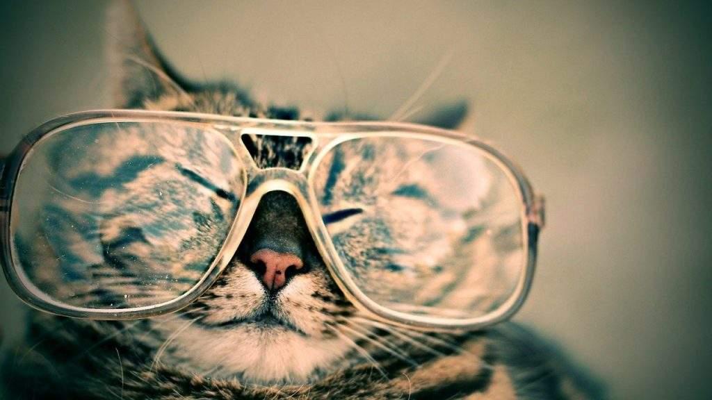 Look Good in Glasses