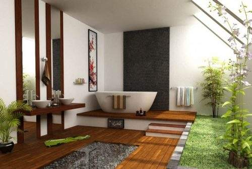 Top Indoor Plants for Your Interior Design